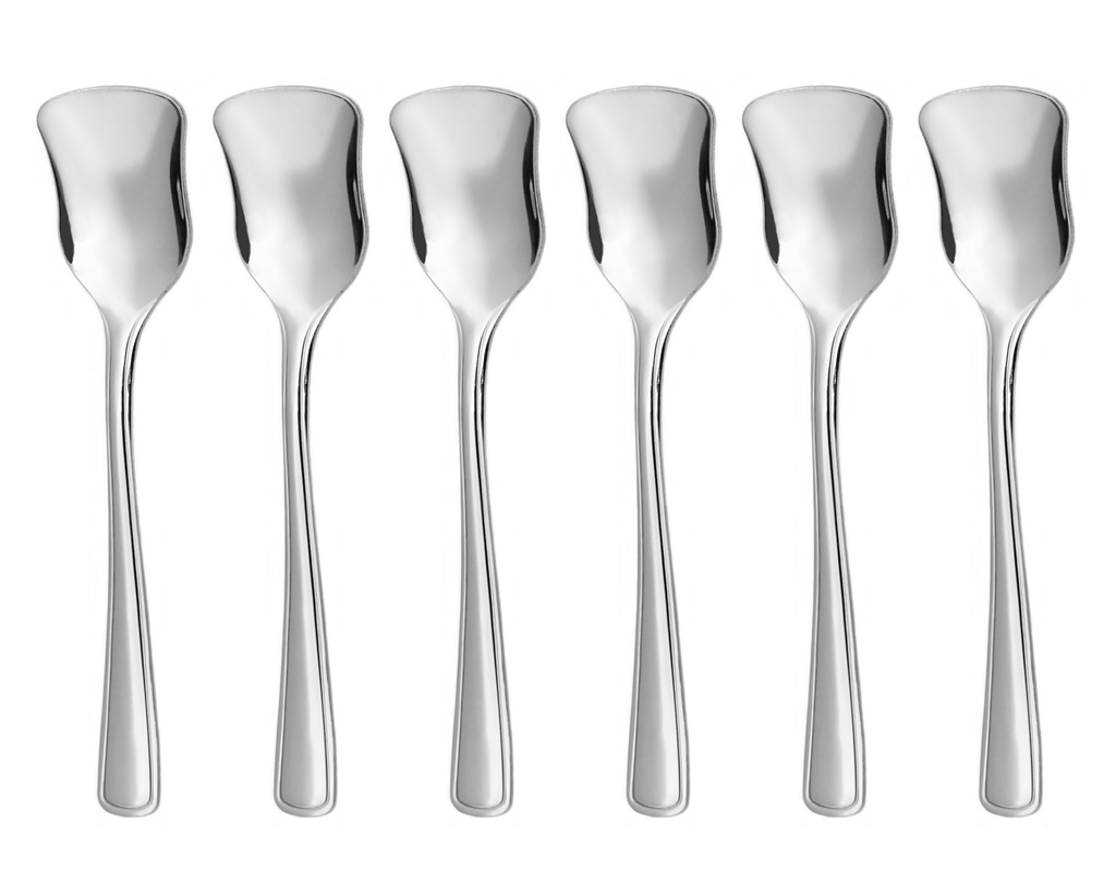 GASTRO ice-cream spoon 6-piece - modern packaging